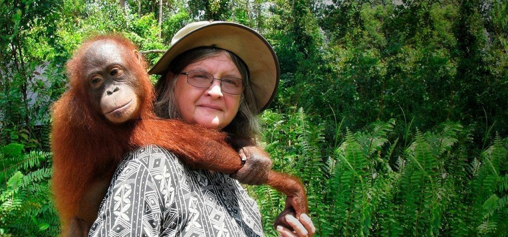 Kép: Orangutan Foundation International Australia